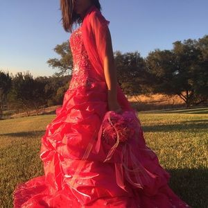 Beautiful Pink Quinceañera/Costume/Ball Gown